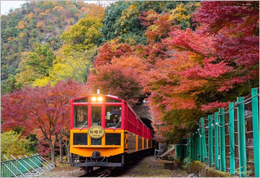 嵯峨野観光鉄道トロッコ列車