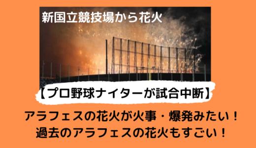 【動画】神宮球場が花火で試合中断!嵐のLIVEでヤクルトVS中日戦がパニックに