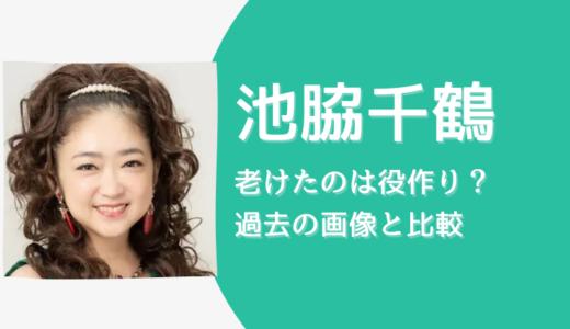 【その女、ジルバ】池脇千鶴が老けて別人?理由は役作りか【画像比較】