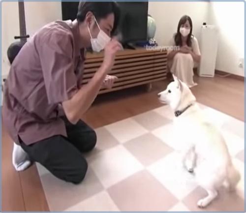 【画像】志村けんの家政婦・星野初弥がかわいい!2児の母で愛犬も引き取る!