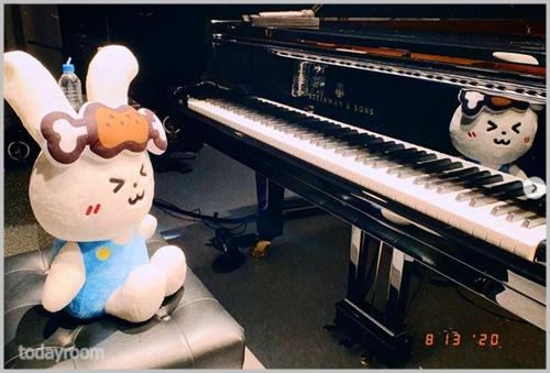 ハラミちゃん|大学は国立音楽大学?!4歳からピアノも挫折した過去!